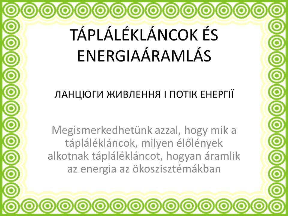 TÁPLÁLÉKLÁNCOK ÉS ENERGIAÁRAMLÁS ЛАНЦЮГИ ЖИВЛЕННЯ І ПОТІК ЕНЕРГІЇ Megismerkedhetünk azzal, hogy mik a táplálékláncok, milyen élőlények alkotnak táplálékláncot, hogyan áramlik az energia az ökoszisztémákban