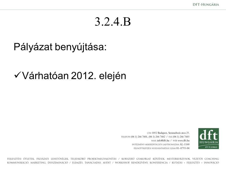 3.2.4.B Pályázat benyújtása: Várhatóan 2012. elején