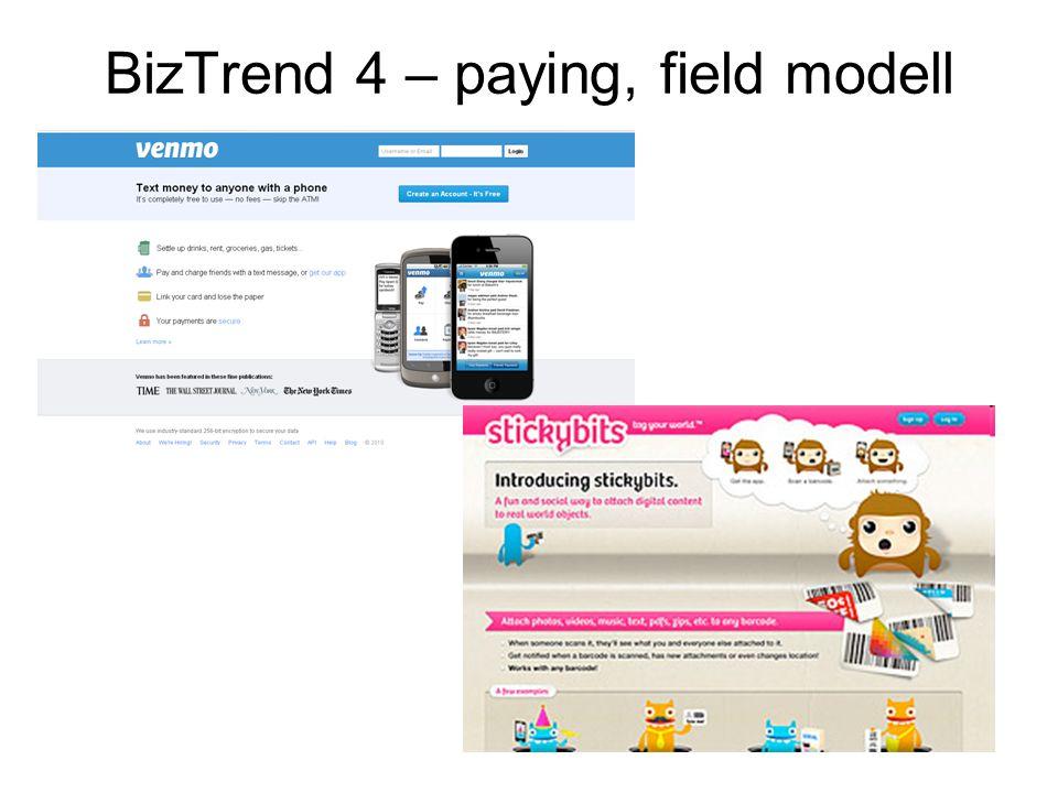 BizTrend 4 – paying, field modell