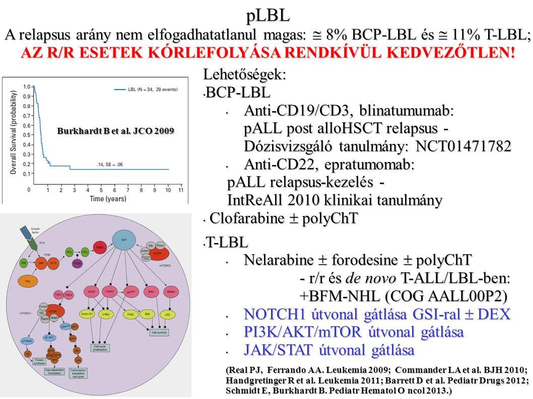 pLBL A relapsus arány nem elfogadhatatlanul magas:  8% BCP-LBL és  11% T-LBL; AZ R/R ESETEK KÓRLEFOLYÁSA RENDKÍVÜL KEDVEZŐTLEN.