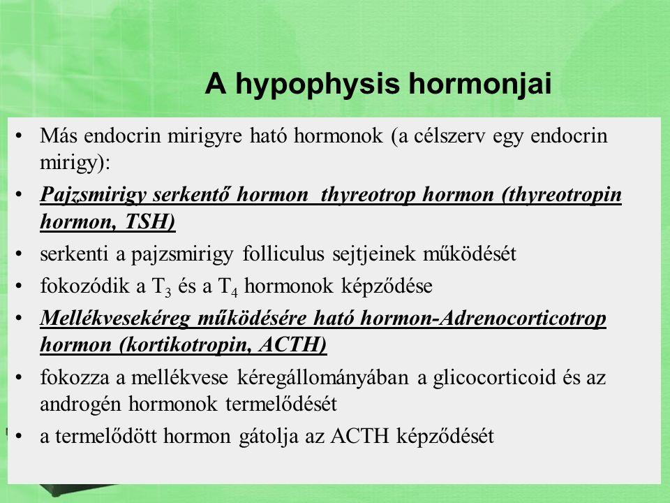 A hypophysis hormonjai Más endocrin mirigyre ható hormonok (a célszerv egy endocrin mirigy): Pajzsmirigy serkentő hormon thyreotrop hormon (thyreotrop