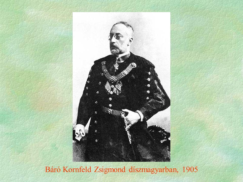Báró Kornfeld Zsigmond díszmagyarban, 1905