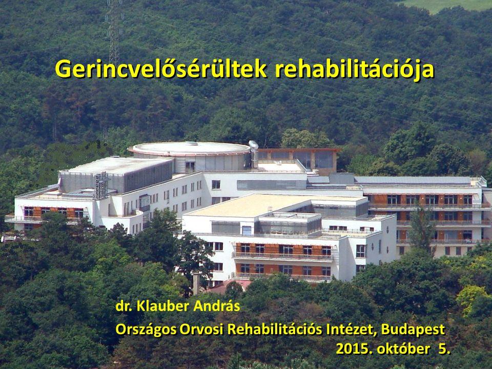 Gerincvelősérültek rehabilitációja Országos Orvosi Rehabilitációs Intézet, Budapest 2015. október 5. Országos Orvosi Rehabilitációs Intézet, Budapest