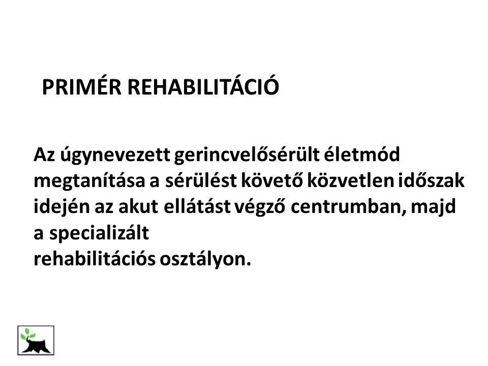- A gerincvelő-károsodás következtében könnyen kialakuló szövődmények megelőzése - A gerincvelősérült állapot következtében, az elsődleges ellátás után esetlegesen kialakuló elváltozások, szövődmények, problémák, ill - A gerincvelő sérüléssel közvetlenül össze nem függő egyéb egészségügyi problémák megoldása KÉSŐI REHABILITÁCIÓ