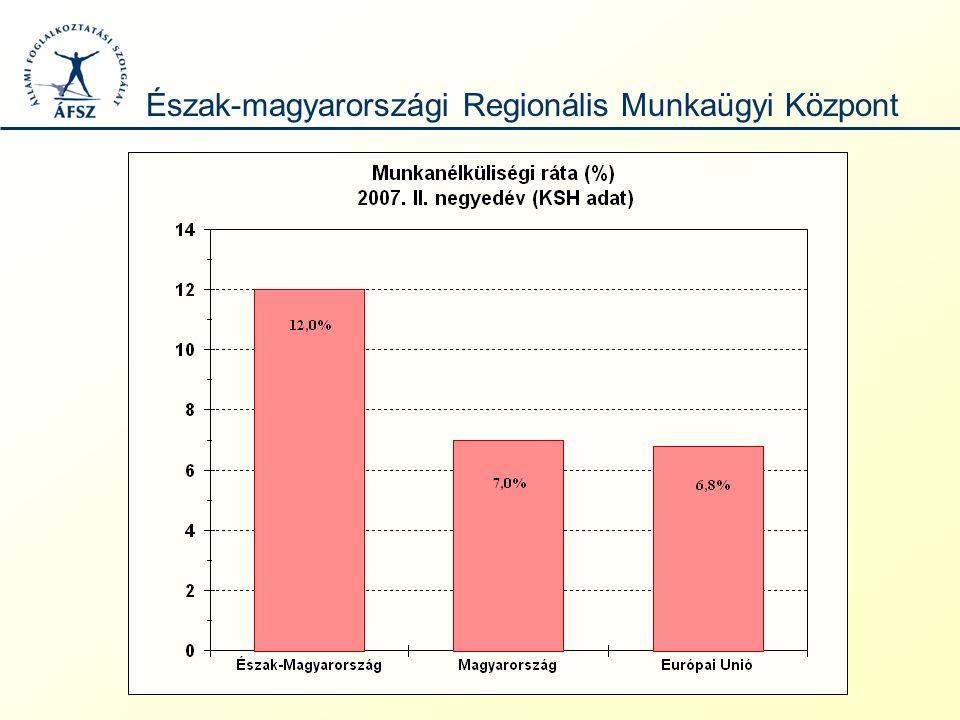 MegnevezésAktivitási arány Foglalkoztatási ráta Munkanélküliségi ráta Közép-Magyarország59,156,6 4,3 Közép-Dunántúl57,654,9 4,8 Nyugat-Dunántúl58,555,5 5,1 Dél-Dunántúl50,145,5 9,2 Észak-Magyarország50,944,812,0 Észak-Alföld51,145,810,3 Dél-Alföld52,548,4 7,7 Magyarország54,951,1 7,0 Gazdasági aktivitás a KSH adatok tükrében 2007.
