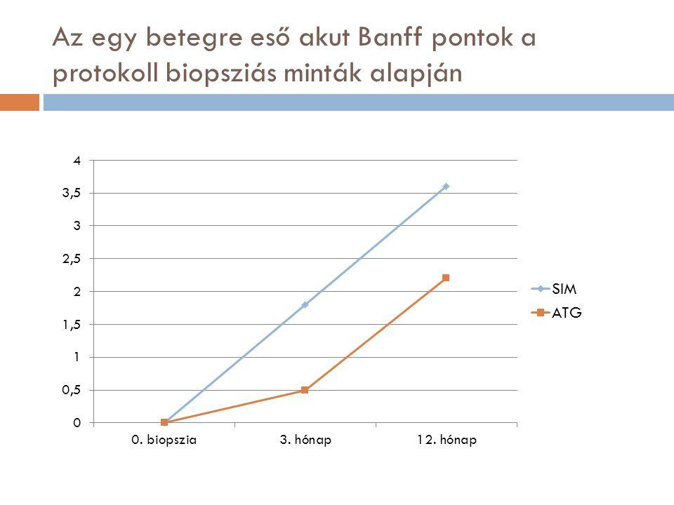 Az egy betegre eső akut Banff pontok a protokoll biopsziás minták alapján