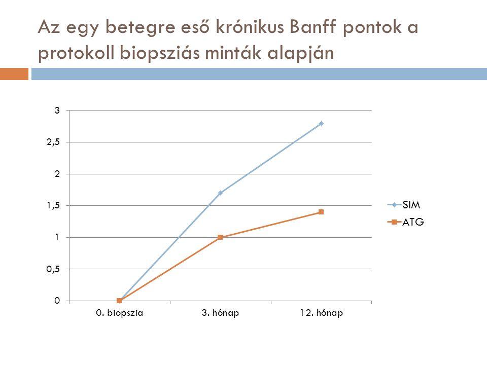 Az egy betegre eső krónikus Banff pontok a protokoll biopsziás minták alapján