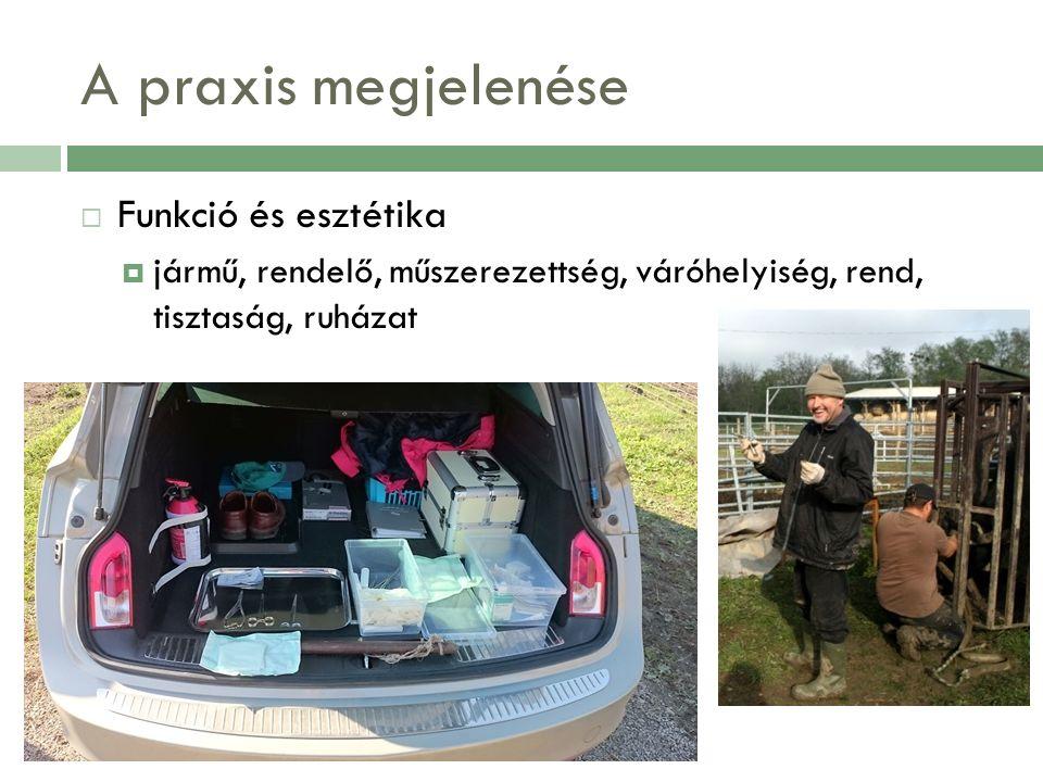 A praxis megjelenése  Funkció és esztétika  jármű, rendelő, műszerezettség, váróhelyiség, rend, tisztaság, ruházat