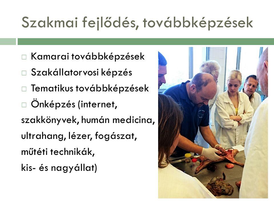Szakmai fejlődés, továbbképzések  Kamarai továbbképzések  Szakállatorvosi képzés  Tematikus továbbképzések  Önképzés (internet, szakkönyvek, humán