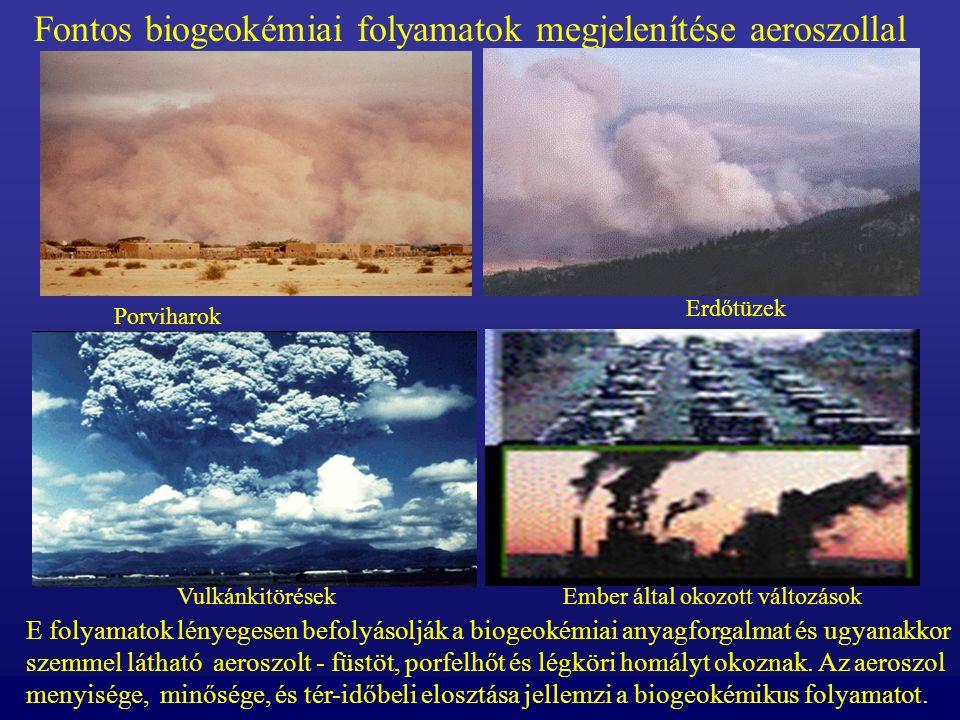 Növényi égések füstje A téli szavanna füst egy 1000- 2000 km hoszú sávban látható.