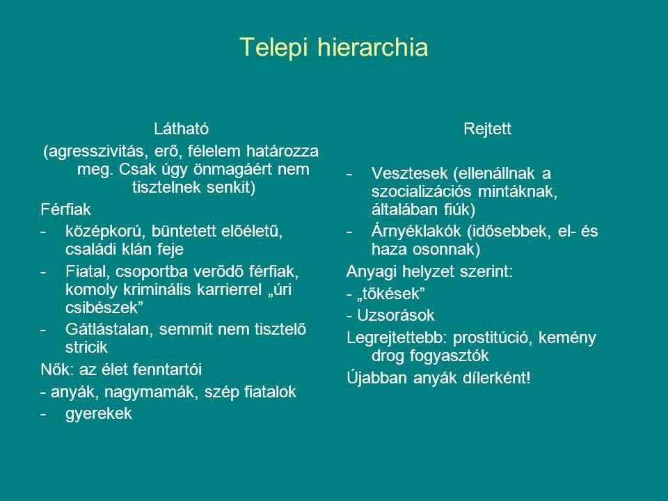 Telepi hierarchia Látható (agresszivitás, erő, félelem határozza meg. Csak úgy önmagáért nem tisztelnek senkit) Férfiak -középkorú, büntetett előéletű