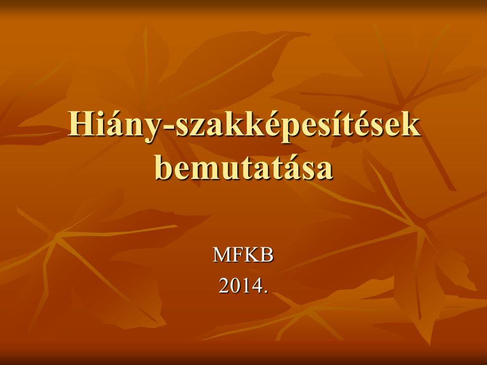 Hiány-szakképesítések bemutatása MFKB2014.