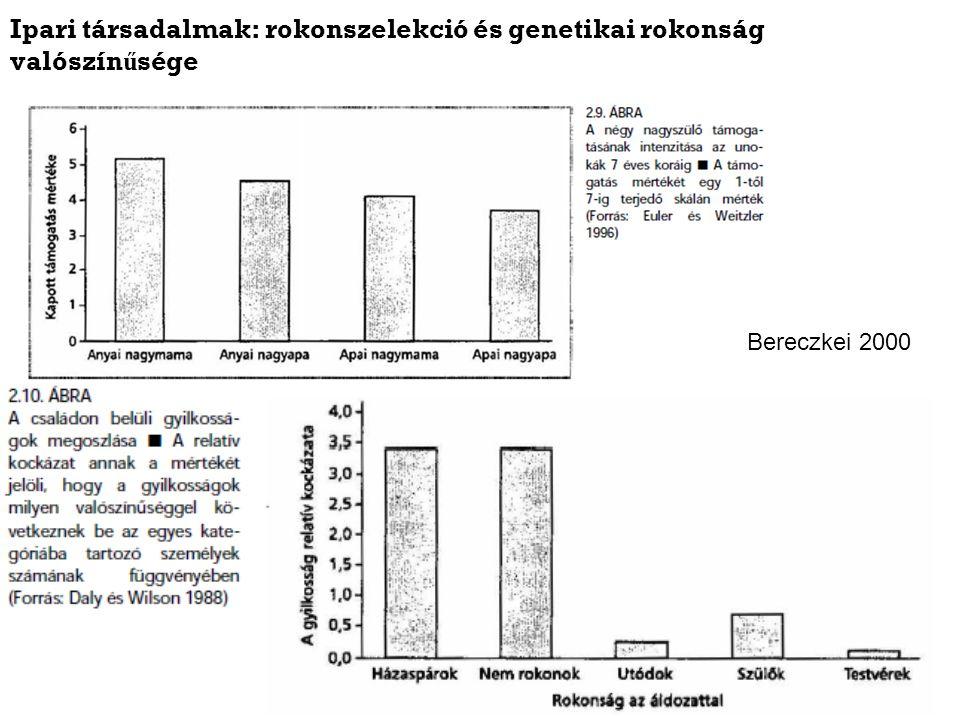 Ipari társadalmak: rokonszelekció és genetikai rokonság valószín ű sége Bereczkei 2000