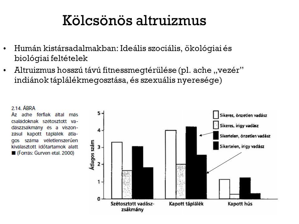 Kölcsönös altruizmus Humán kistársadalmakban: Ideális szociális, ökológiai és biológiai feltételek Altruizmus hosszú távú fitnessmegtérülése (pl. ache