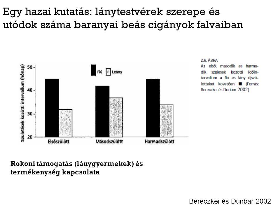 Egy hazai kutatás: lánytestvérek szerepe és utódok száma baranyai beás cigányok falvaiban Bereczkei és Dunbar 2002 Rokoni támogatás (lánygyermekek) és