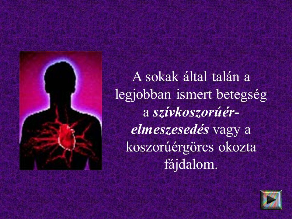 """A szív egyes területeit csak egy-egy verőér táplálja, (a koszorúerek """"végartériák ), s ha az beszűkül vagy teljesen elzáródik, az oda tartozó szívizomzat először """"fuldokolni kezd, majd elhal."""