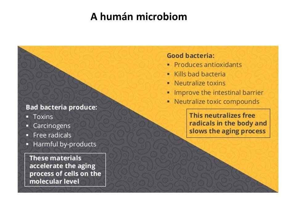 A humán microbiom