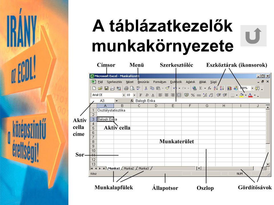 A cella a táblázat egy rubrikája adatot tartalmaz –szöveg –szám jellegű (szám, képlet, függvény, dátum) jellemzés: melyik oszlop és sor találkozásánál van.