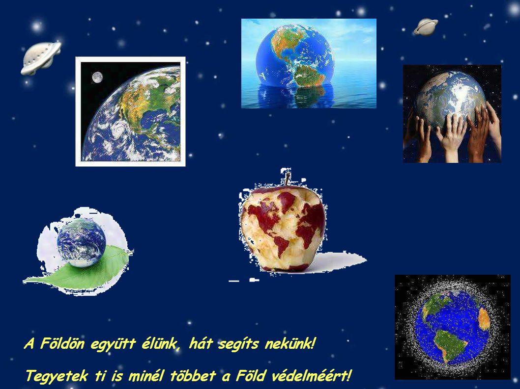 A Földön együtt élünk, hát segíts nekünk! Tegyetek ti is minél többet a Föld védelméért!