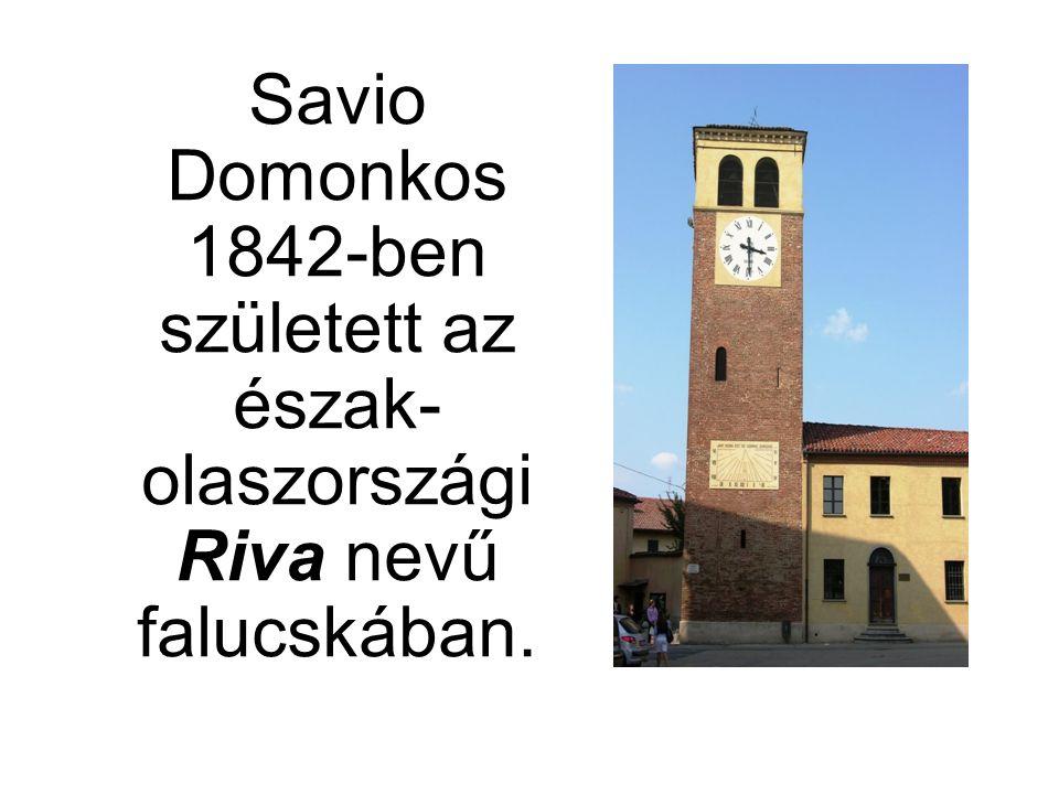 Savio Domonkos 1842-ben született az észak- olaszországi Riva nevű falucskában.