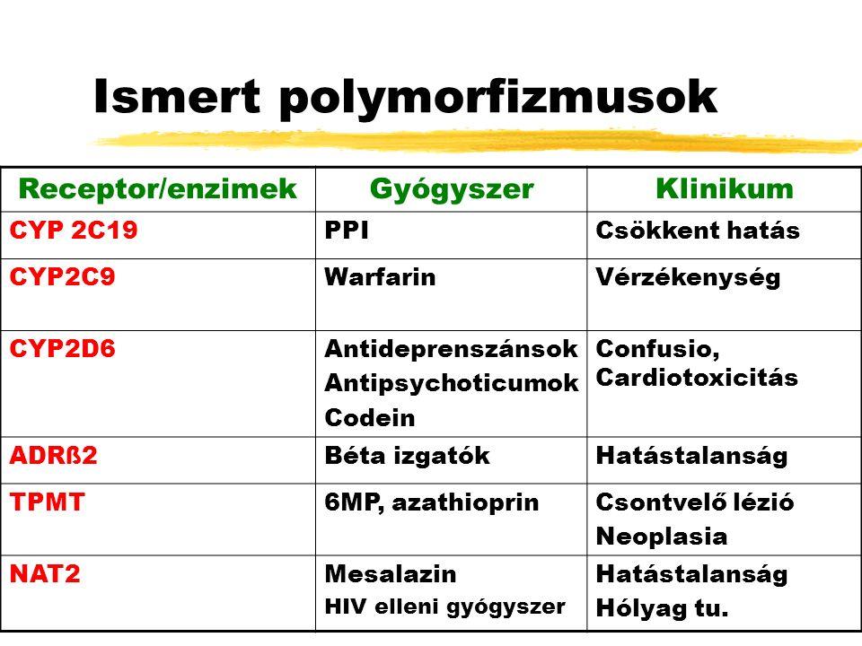 Ismert polymorfizmusok Receptor/enzimekGyógyszerKlinikum CYP 2C19PPICsökkent hatás CYP2C9WarfarinVérzékenység CYP2D6Antideprenszánsok Antipsychoticumok Codein Confusio, Cardiotoxicitás ADRß2Béta izgatókHatástalanság TPMT6MP, azathioprinCsontvelő lézió Neoplasia NAT2Mesalazin HIV elleni gyógyszer Hatástalanság Hólyag tu.