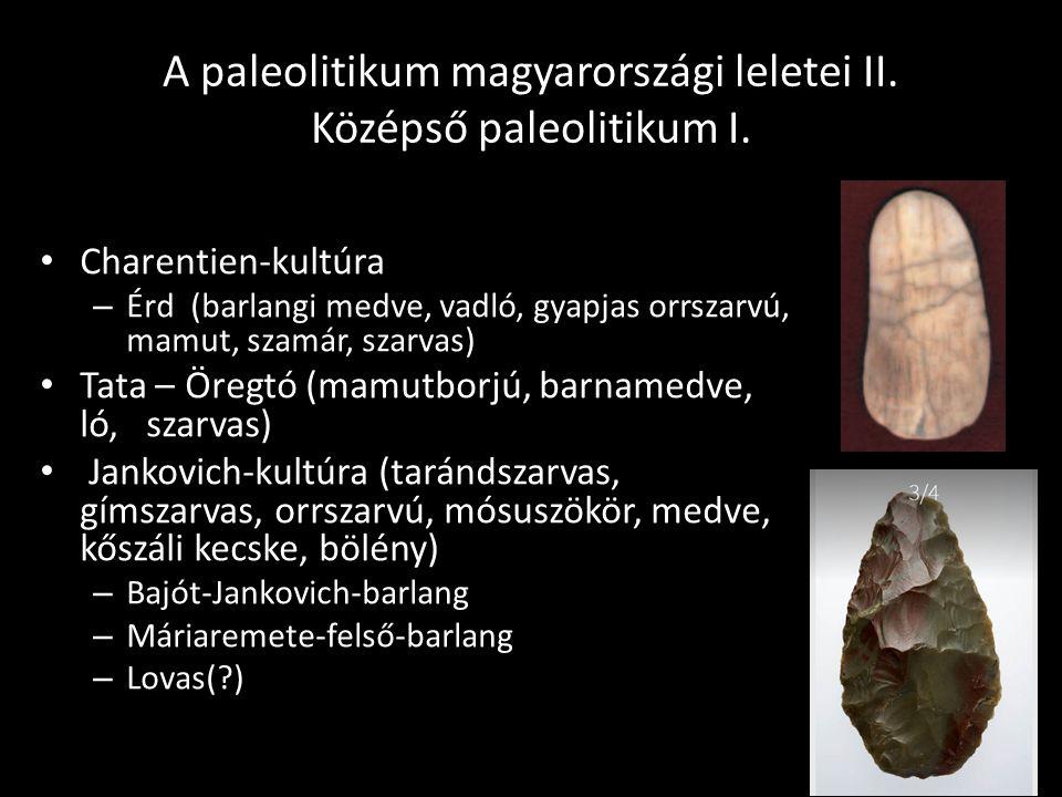 A paleolitikum magyarországi leletei II. Középső paleolitikum I. Charentien-kultúra – Érd (barlangi medve, vadló, gyapjas orrszarvú, mamut, szamár, sz