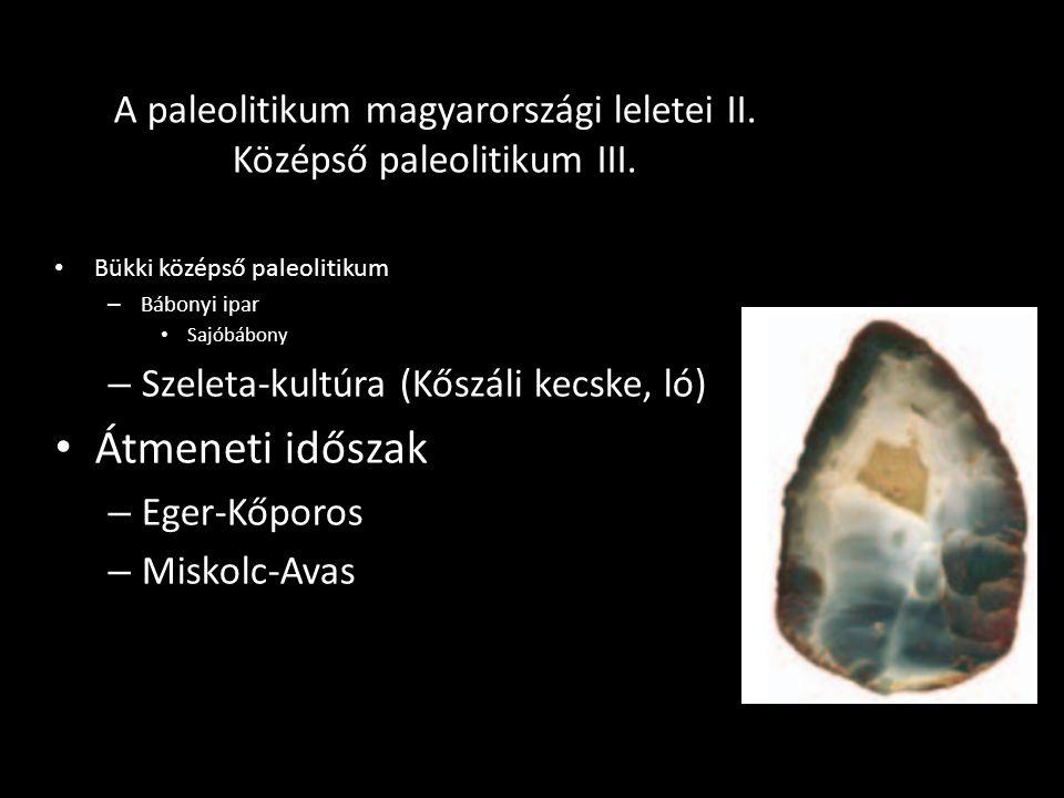 A paleolitikum magyarországi leletei II. Középső paleolitikum III. Bükki középső paleolitikum – Bábonyi ipar Sajóbábony – Szeleta-kultúra (Kőszáli kec