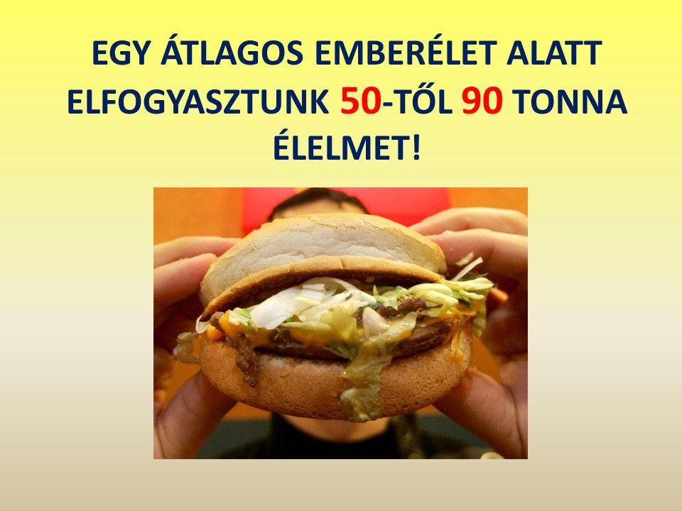 EGY ÁTLAGOS EMBERÉLET ALATT ELFOGYASZTUNK 50 -TŐL 90 TONNA ÉLELMET!