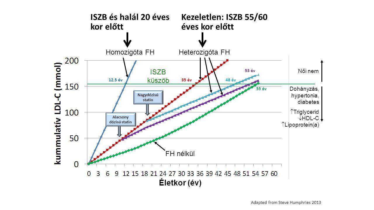 35 év 53 év 48 év 55 év 12.5 év Nagydózisú statin Alacsony dózisú statin ISZB küszöb Női nem Dohányzás, hypertonia, diabetes  Triglycerid  HDL-C  Lipoprotein(a) FH nélkül Homozigóta FHHeterozigóta FH Életkor (év) Adapted from Steve Humphries 2013 ISZB és halál 20 éves kor előtt Kezeletlen: ISZB 55/60 éves kor előtt