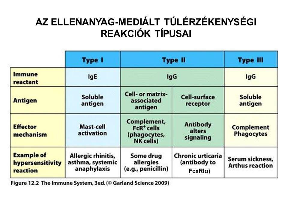Az anti-IgE ellenanyagok hatása az allergiás reakciókra Holgate ST, et al.