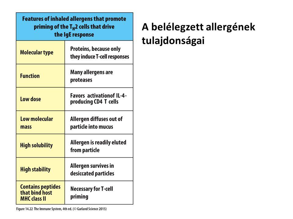 A belélegzett allergének tulajdonságai