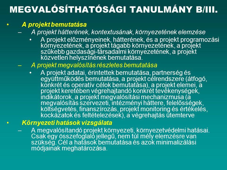 MEGVALÓSÍTHATÓSÁGI TANULMÁNY B/III.