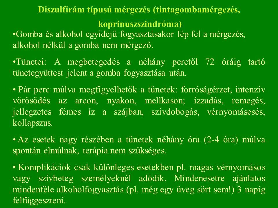 Diszulfirám típusú mérgezés (tintagombamérgezés, koprinuszszindróma) Gomba és alkohol egyidejű fogyasztásakor lép fel a mérgezés, alkohol nélkül a gomba nem mérgező.