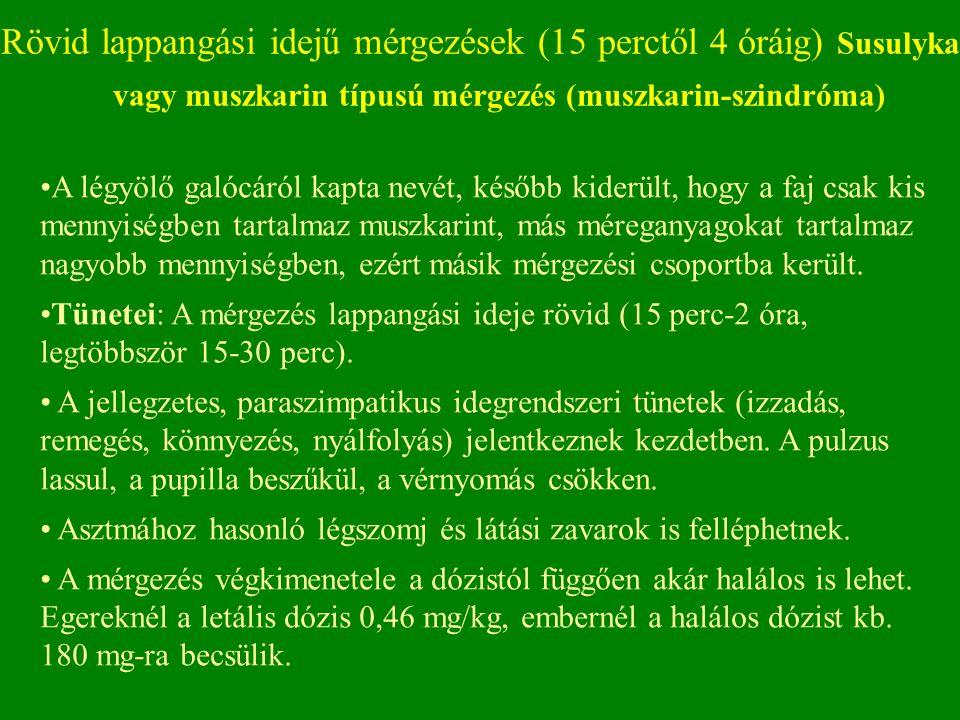 Rövid lappangási idejű mérgezések (15 perctől 4 óráig) Susulyka vagy muszkarin típusú mérgezés (muszkarin-szindróma) A légyölő galócáról kapta nevét, később kiderült, hogy a faj csak kis mennyiségben tartalmaz muszkarint, más méreganyagokat tartalmaz nagyobb mennyiségben, ezért másik mérgezési csoportba került.