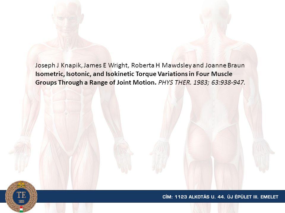 Az izomfejek erőkarjának hossza