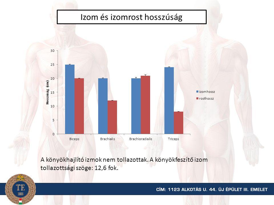 A könyökízület forgatónyomaték-ízületi szög kapcsolata nőknél HajlítókFeszítők 90  70  90  70 
