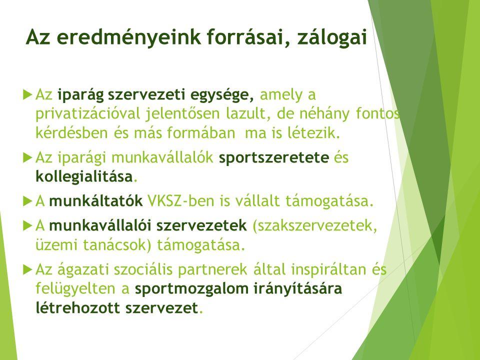 A villamosenergia-ipari sportmozgalom irányítási rendszere Villamosenergia-ipari Ágazati Párbeszéd Bizottság(VÁPB) EVDSZ, BDSZVTMSZ Villamosenergia-ipar a Sportért (VITSPORT) Alapítvány Fel.