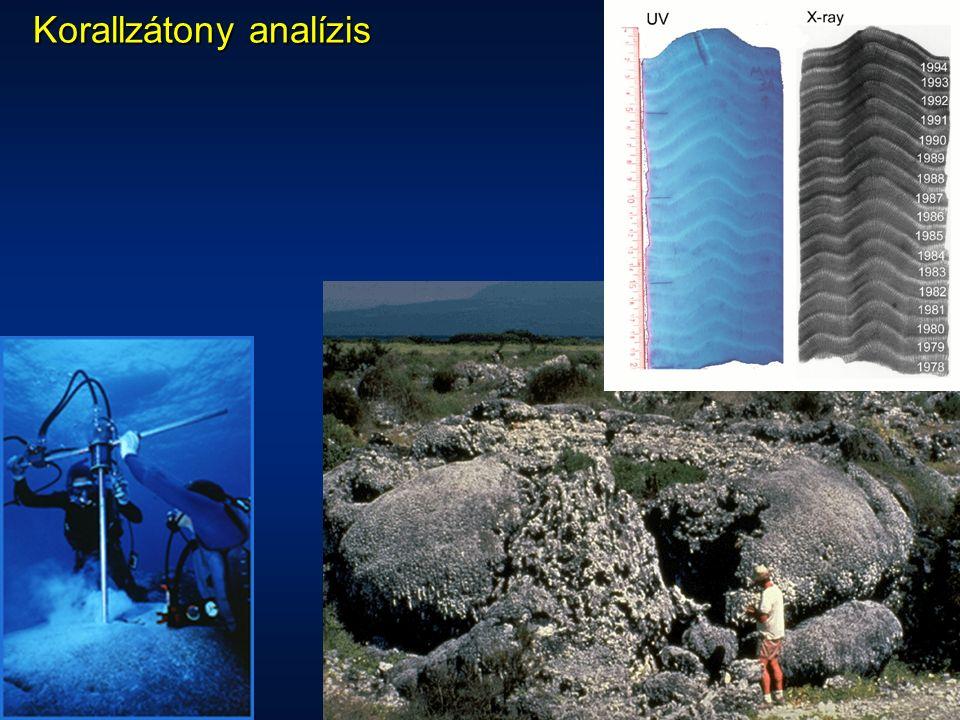 Korallzátony analízis