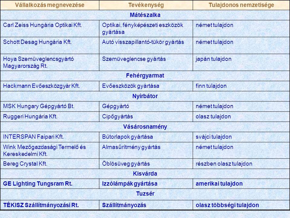 Vállalkozás megnevezéseTevékenységTulajdonos nemzetisége Mátészalka Carl Zeiss Hungária Optikai Kft.Optikai, fényképészeti eszközök gyártása német tulajdon Schott Desag Hungária Kft.Autó visszapillantó-tükör gyártásnémet tulajdon Hoya Szemüveglencsgyártó Magyarország Rt.