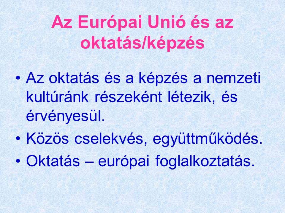 Az Európai Unió és az oktatás/képzés Az oktatás és a képzés a nemzeti kultúránk részeként létezik, és érvényesül.