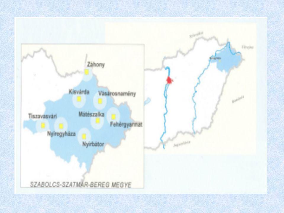 A térség, a Záhonyi Vállalkozási Övezet gazdasága; a szakképzés helyzete