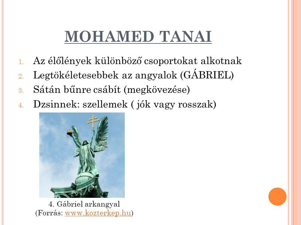 MOHAMED TANAI 1. Az élőlények különböző csoportokat alkotnak 2.