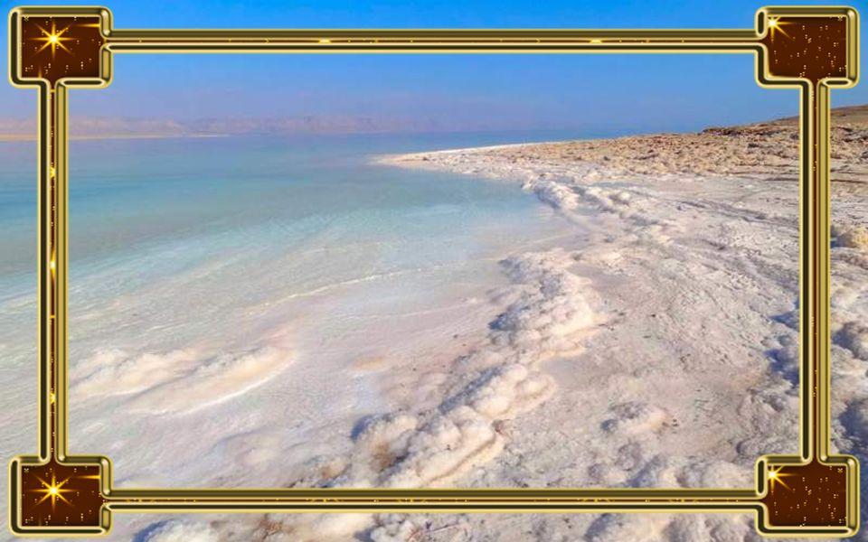 Holt-tenger A Holt-tenger neve mindenkinek ismerős, hiszen számtalan kozmetikai- és egészségügyi termék alapját képezik a csodás vidékről származó, tö