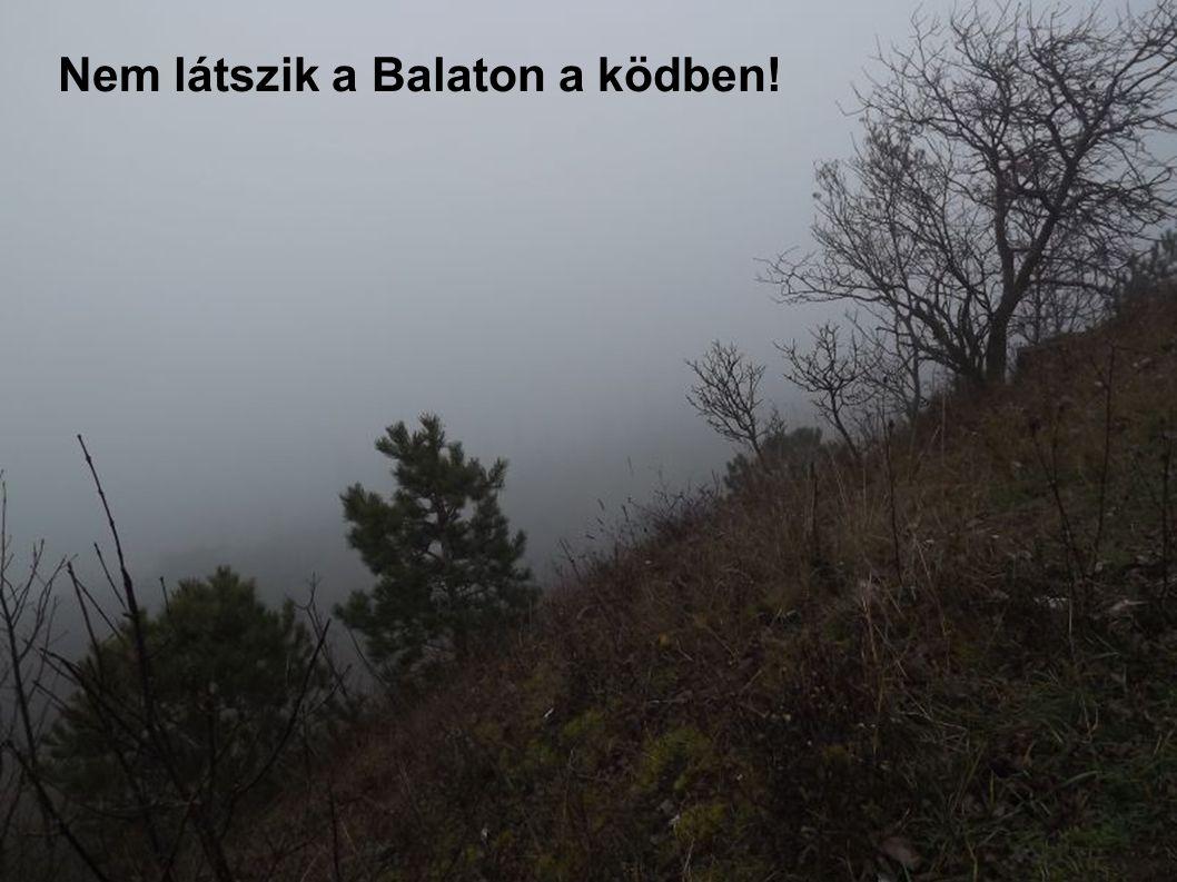 Nem látszik a Balaton a ködben!