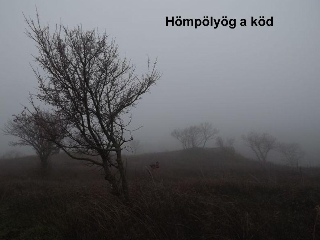 Hömpölyög a köd