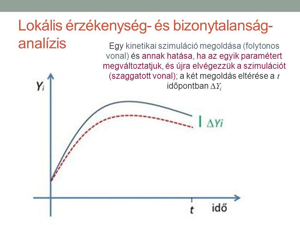 Lokális érzékenység- és bizonytalanság- analízis Egy kinetikai szimuláció megoldása (folytonos vonal) és annak hatása, ha az egyik paramétert megváltoztatjuk, és újra elvégezzük a szimulációt (szaggatott vonal); a két megoldás eltérése a t időpontban ΔY i