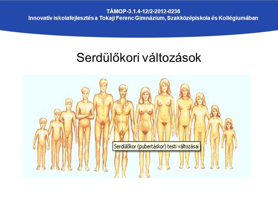 Serdülőkori változások TÁMOP-3.1.4-12/2-2012-0236 Innovatív iskolafejlesztés a Tokaji Ferenc Gimnázium, Szakközépiskola és Kollégiumában