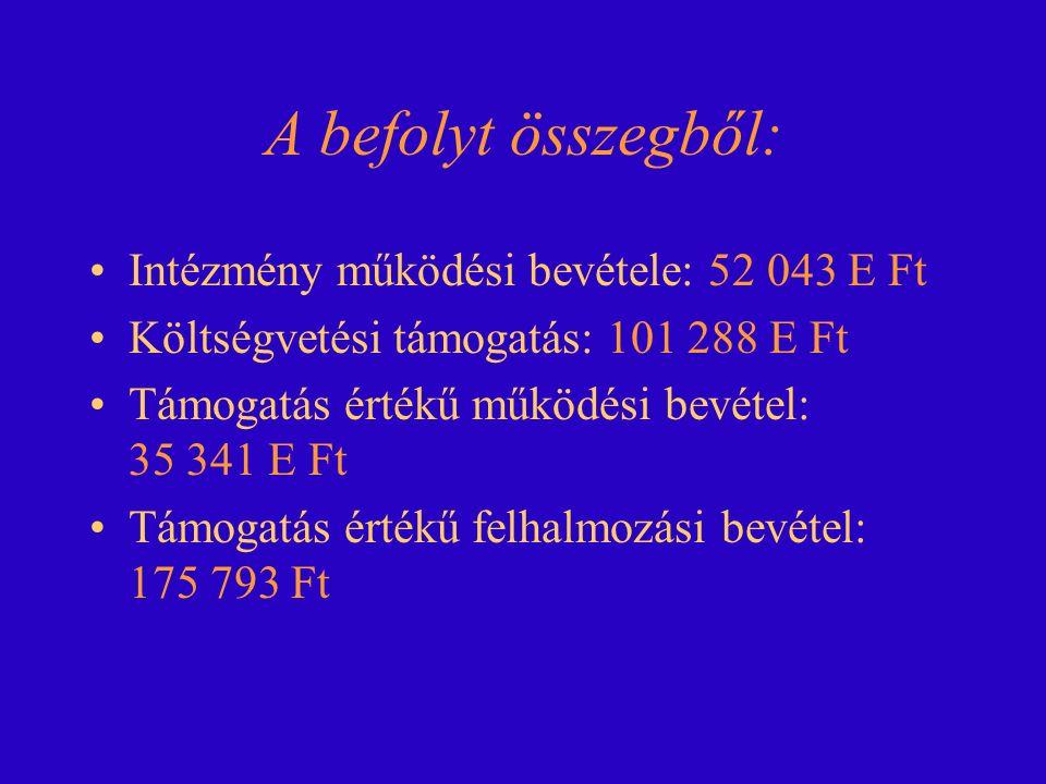 Helyi adóbevétel összesen 49 524 E Ft, ebből: Magánszem.