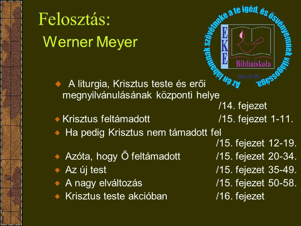 Felosztás: Werner Meyer A liturgia, Krisztus teste és erői megnyilvánulásának központi helye /14. fejezet Krisztus feltámadott /15. fejezet 1-11. Ha p