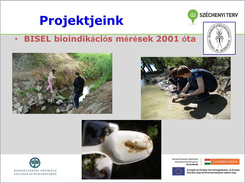 Projektjeink BISEL bioindik á ci ó s m é r é sek 2001 ó ta